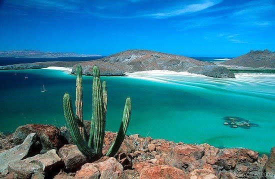 Playa Balandra. Foto: jimcline en Panoramio