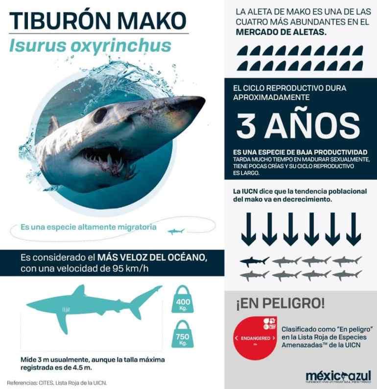 Gráfico de tiburón mako presentada en la COP18 de CITES