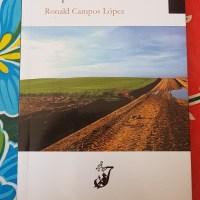 Castilla vista con ojos tropicales: Respuestas de la tierra, de Ronald Campos.