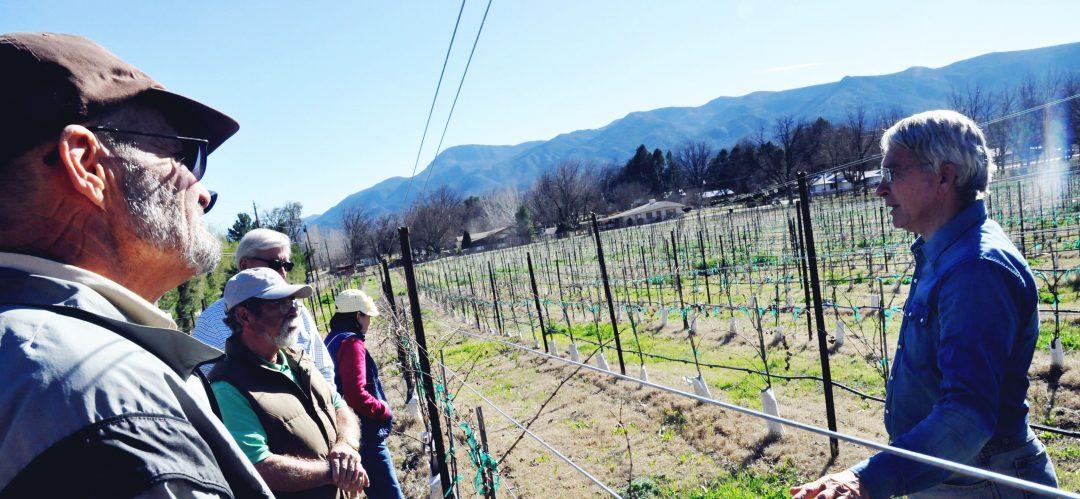 A tour of Salt Mine Wines