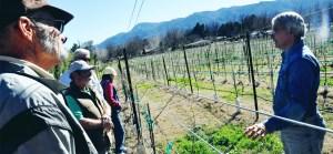 Vineyard Talk