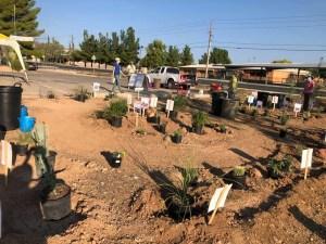 Pollinator Garden Planting Day