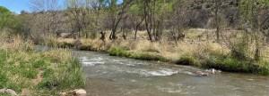 Efficient Irrigation & Crop Conversion