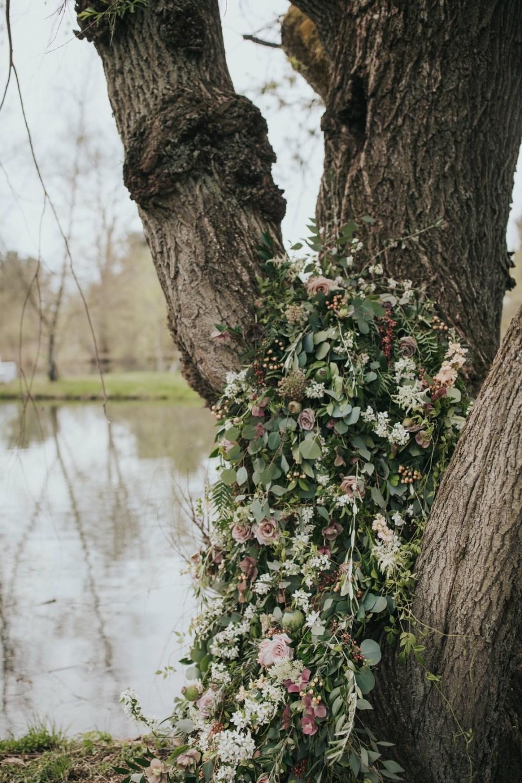 Tree_Oakwood_Photography