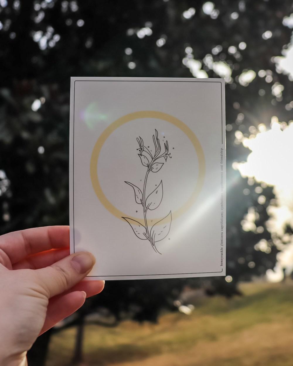 honeysuckle postcard
