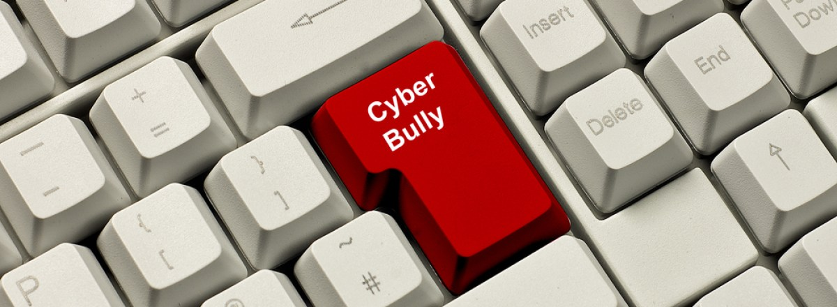 """How to Better Fight Cyberbullying: <span class=""""subtitle"""">Finding Fixes for the Internet Protection Act</span>"""