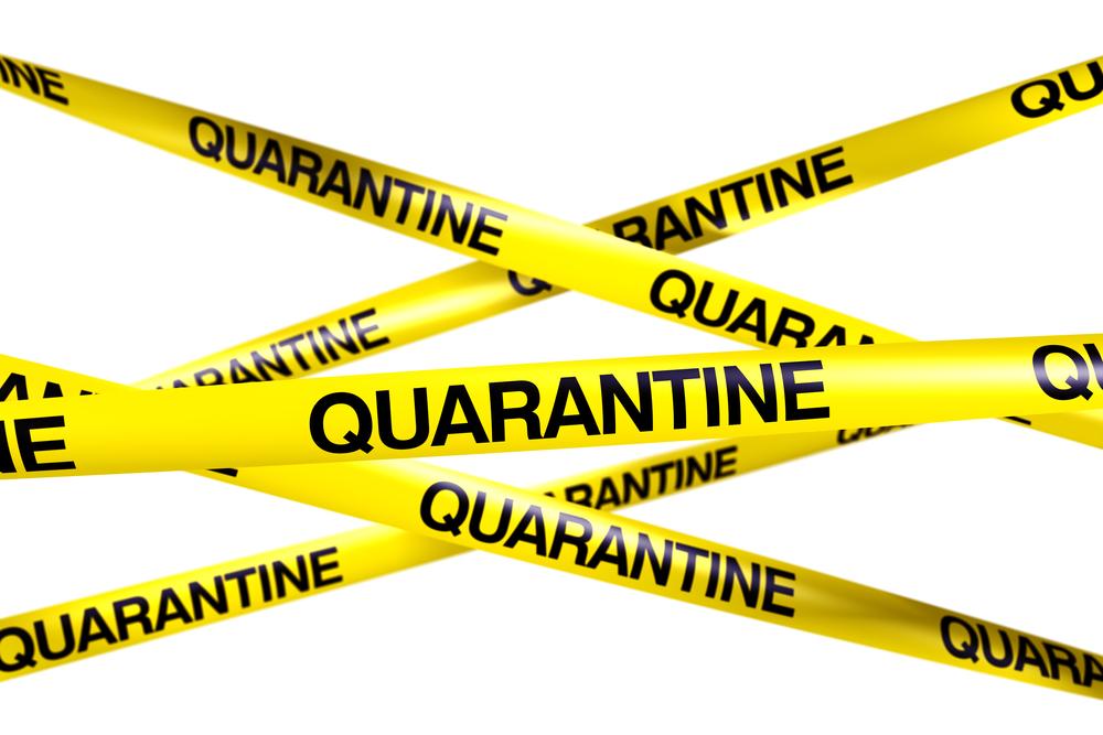 Containing Ebola: Quarantine and the Constitution   Michael C. Dorf