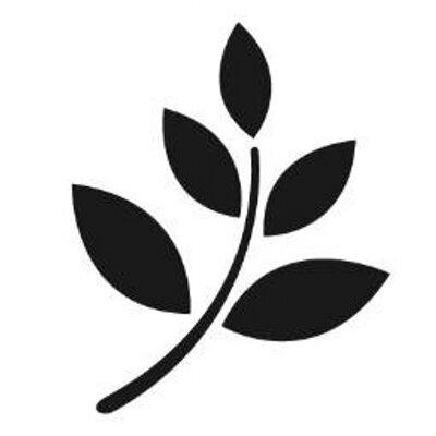 De vijf favoriete aandelen van Nico Pantelis (Slim Beleggen)