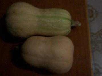 calabaza-butternut-cacahuete-6