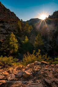 Zion Nationaal Park - 3