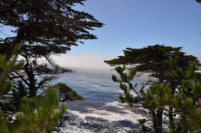 17 Mile Drive – Monterey – Californië – Scenic Drive