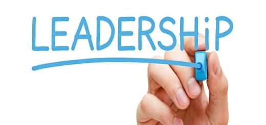 sterke leider, Leiderschap, kabinetsformatie2021, nieuw leiderschap