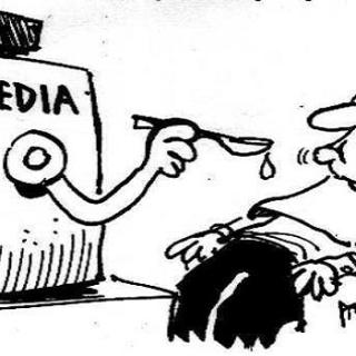 MSM-leugens, Buitenlandse studenten, censuur