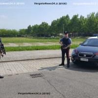 Carabinieri - Gaggio Montano e Alto Reno, automobilisti denunciati