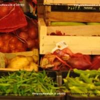 Solidarietà alimentare: 5,4 milioni di euro ai Comuni Città Metropolitana di Bologna, 43.102 euro a Vergato