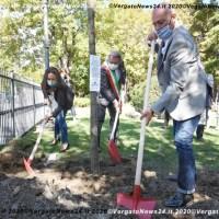 Ambiente. L'Emilia-Romagna mette radici per il futuro: oggi il via alla rivoluzione verde con il primo dei 4 milioni e mezzo di alberi che verranno piantati in regione