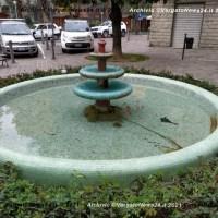"""Che fine ha fatto lo """"spazzino"""" della Fontana dei Pesci a Vergato?"""