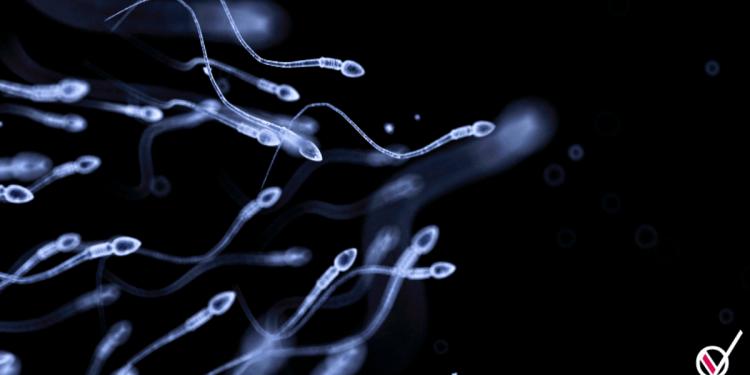 esperma congelado covid19
