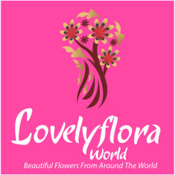 lovelyfloraworld - Beautiful Bouquets Lovingly Made