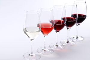 Wine-101