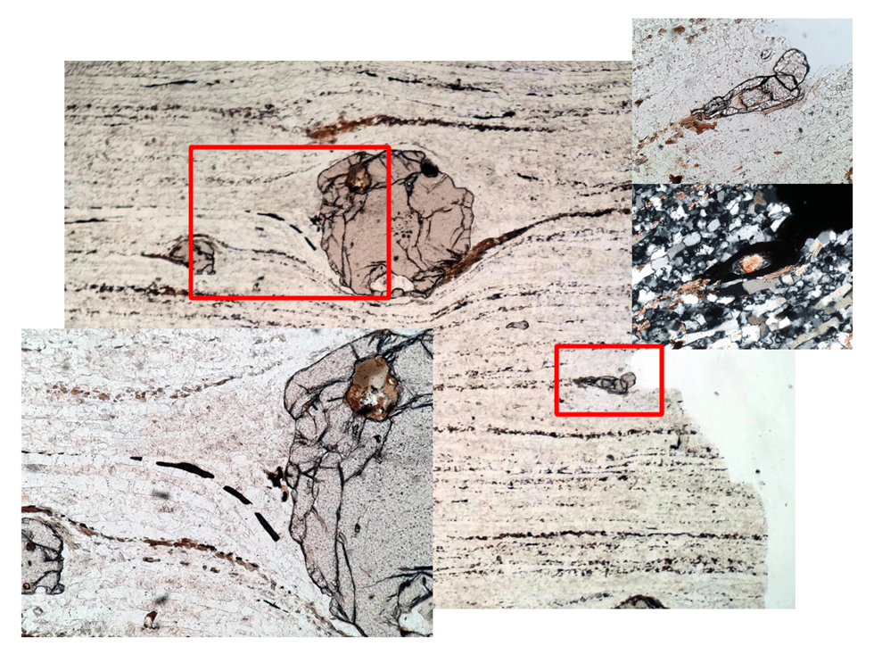 #ThinSectionThursday 6: Hit-and-run (3/6)