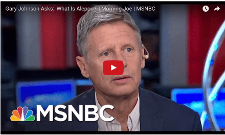 Gary Johnson is an idiot