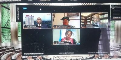 Tony Elumelu, PDG du groupe UBA lors de la table ronde virtuelle de haut niveau en direct du New York Forum Institute