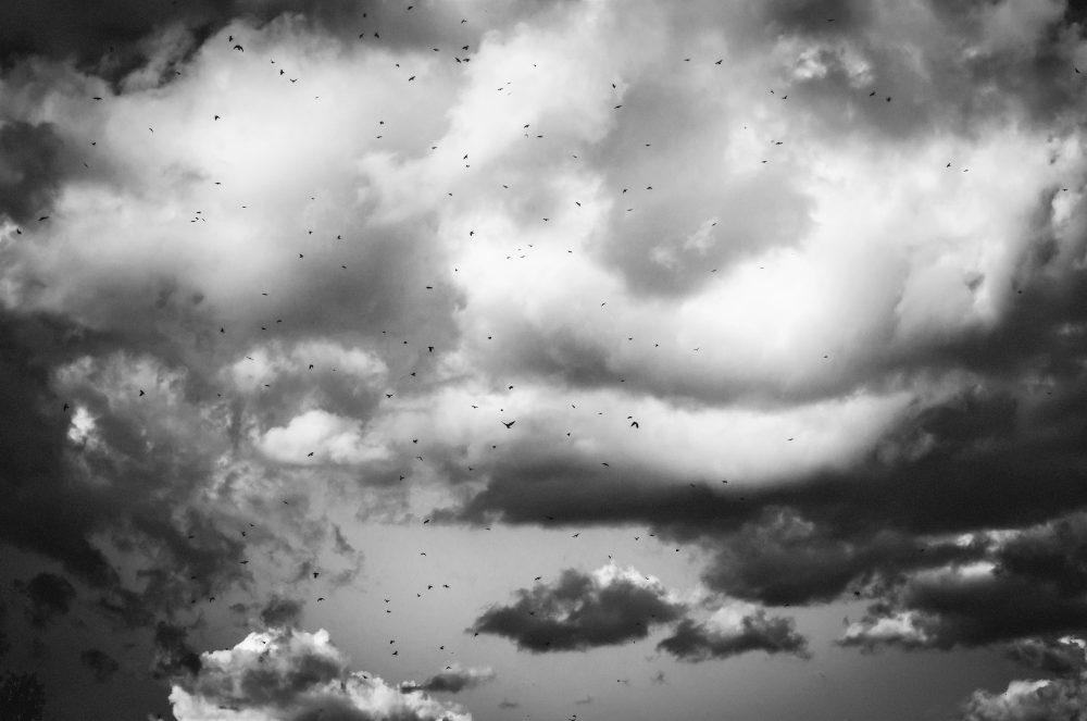 Within the Filipino Diasporic Cloud (Eileen R. Tabios)