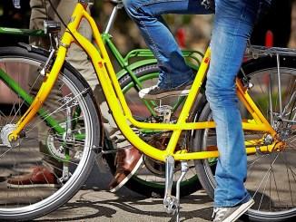Die Rahmengröße hat großen Einfluss auf das Wohlbefinden auf dem Fahrrad. - Foto: djd/Initiative RadKULTUR