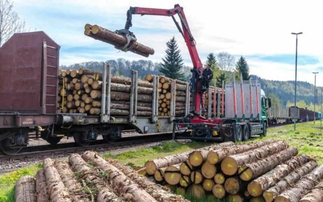Kaum ein Bahnhof ist für Holzverladung geeignet – Bahn und Staat verhindern Verladung auf die Schien. Kein RückZUG der Widmer Rail im Hunsrück