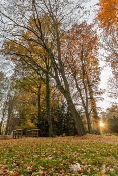 Altdöbern_Herbst (6)