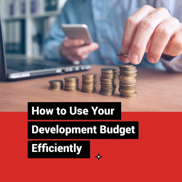 How to Use Your Development Budget Efficiently