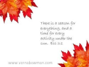 leaves-vernabowman