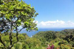 Hawaii Maui - Voyage de noces M