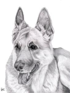 Sasha Portrait