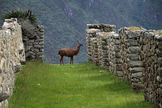 Il sentiero dell'Inca trail