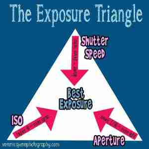 A graphic showing how the elements of exposure work together for the best exposure