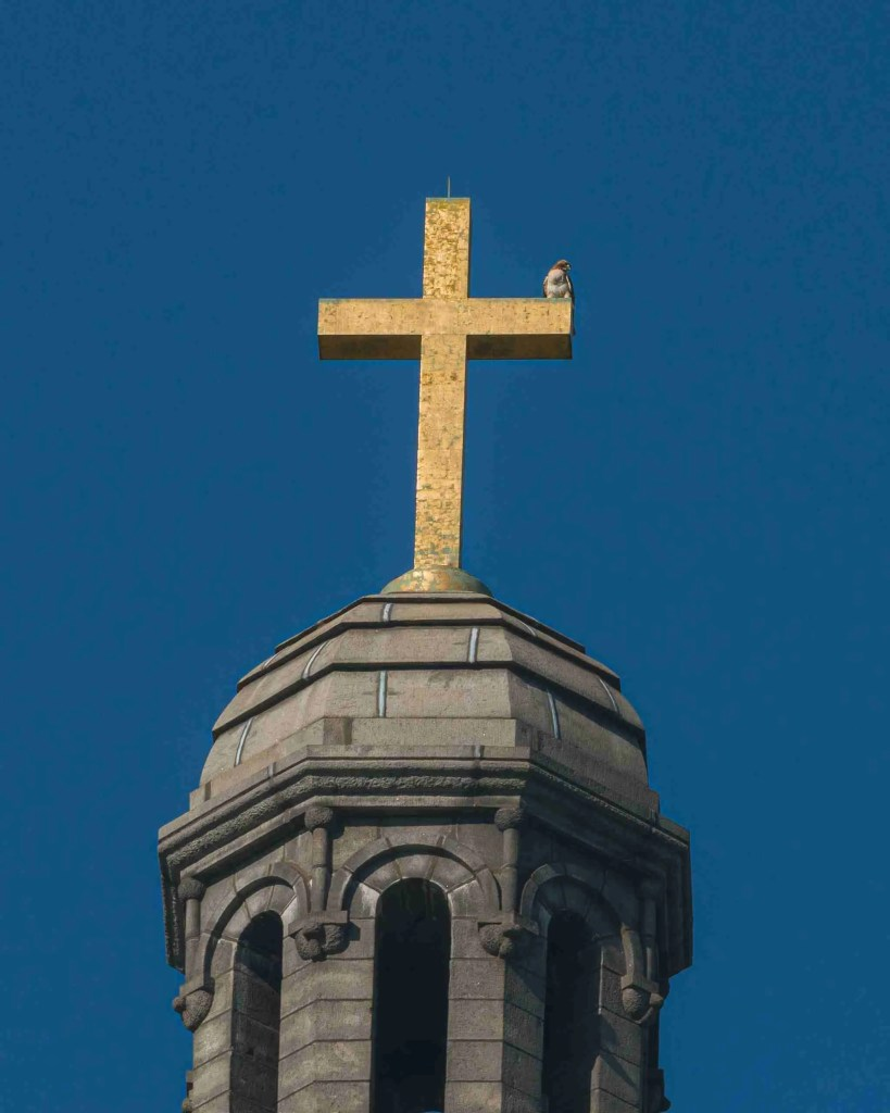 Cross at the top of Cathedral Basilica with Falcon perched for habit post