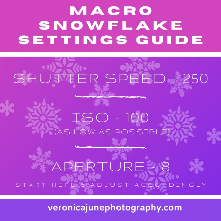 graphic showing settings for how to capture a perfect macro snowflake