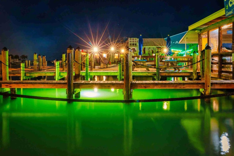 Sea Critters dock at night