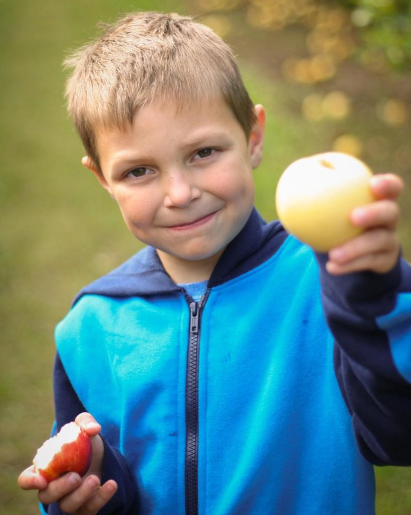 a boy holds an apple in an autumn photoshoot