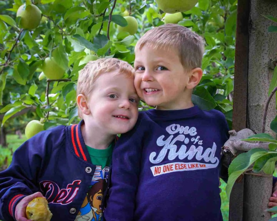 two small boys in an apple orchard for an autumn photoshoot