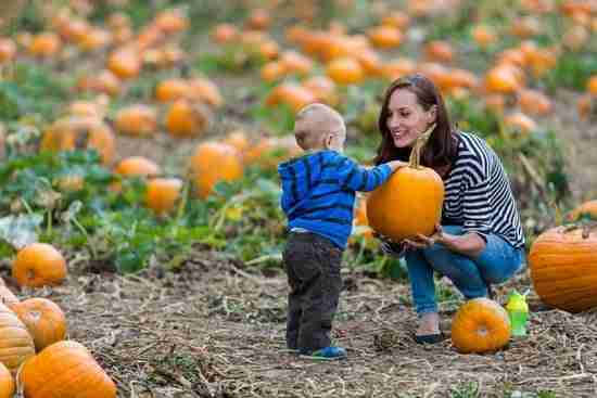A mom and baby with a pumpkin in an autumn photoshoot