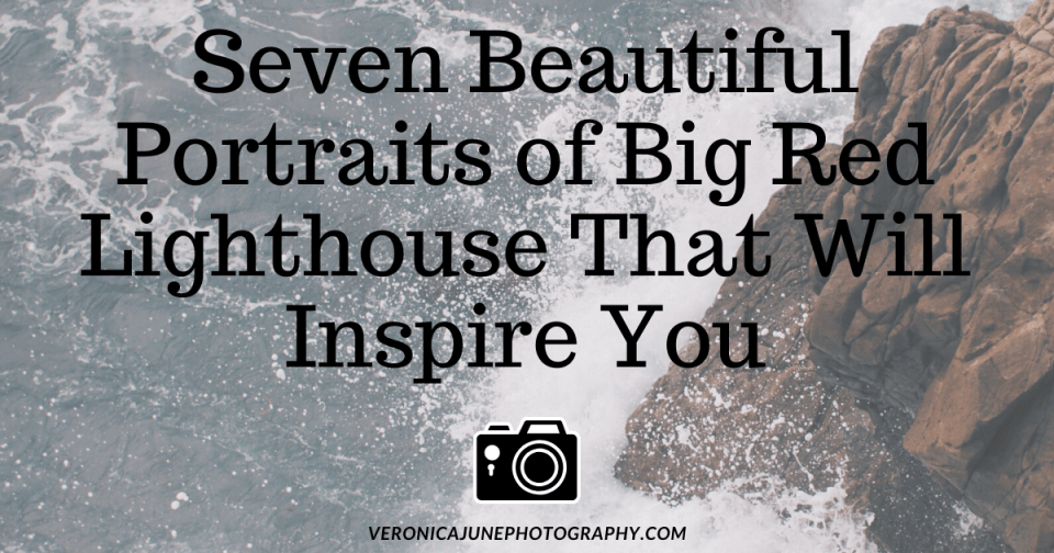 AD image for Portraits of Big Red that shows the title with a tiny camera image