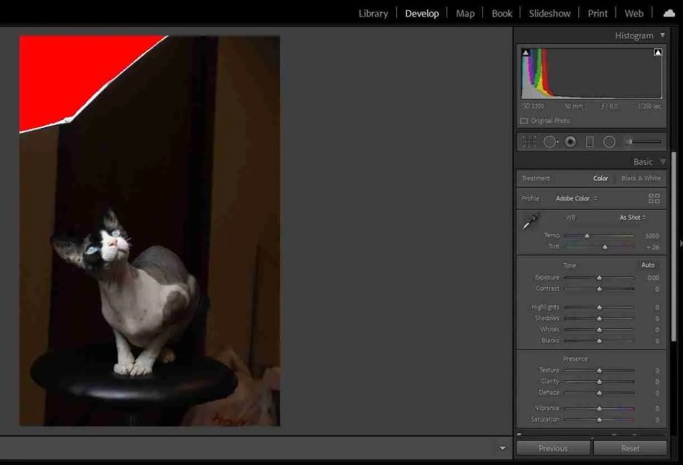 Calculating exposure helps avoid clipping as shown in this image of a cat with a bright white light shown in red in the upper left corner of the image