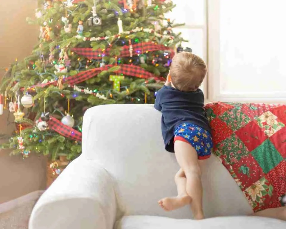 Little boy on the couch looking at the christmas tree