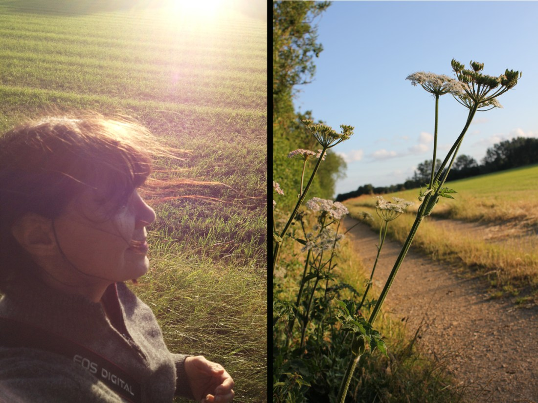 field and me