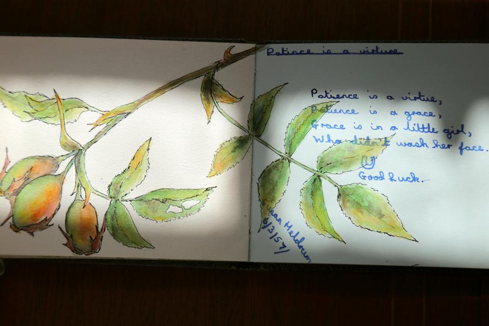 seasonal-journal-veronica-roth-21-copy-copy