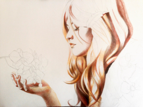 Colored Pencil Drawing step-by-step
