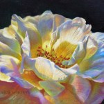 yellow-rose-veronica-winters-colored-pencil